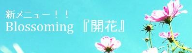 開花 タイトル1MOJI